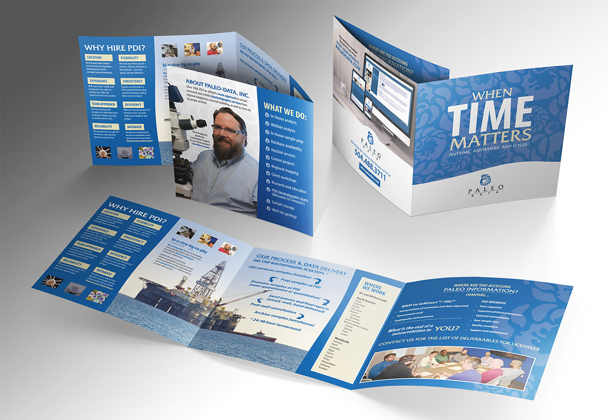 Paleo Data Inc. Sales Brochure by Melismatic Designs LLC