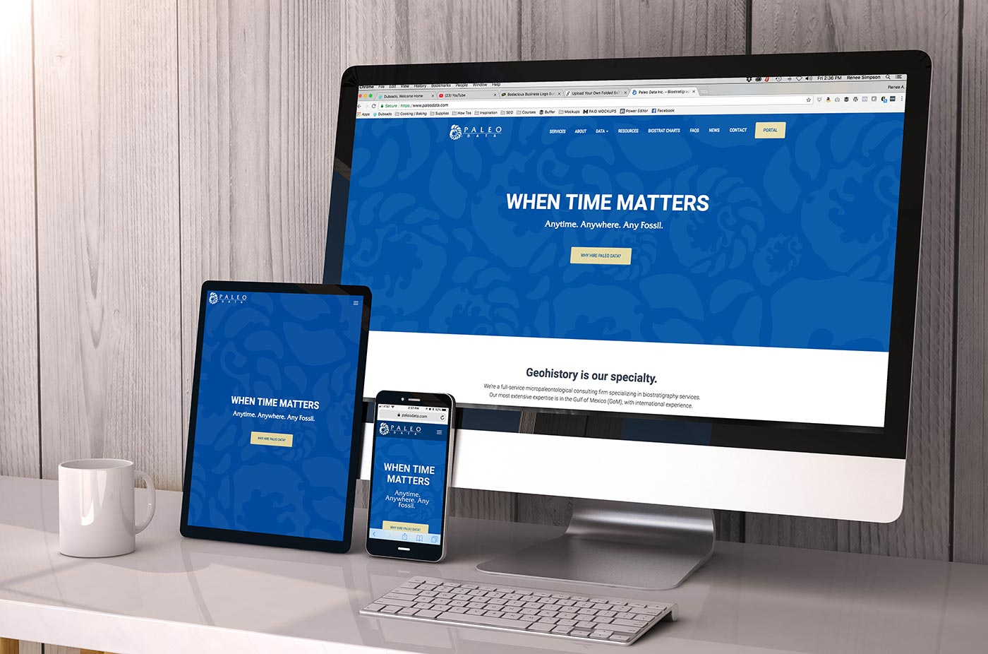 Paleo Data Inc. Web Design by Melismatic Designs LLC
